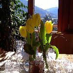 Vista sul Kronplatz dalla veranda del ristorante