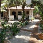 Palm Grove family house