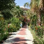 les jardins intérieurs