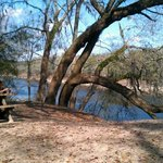 Swannee River