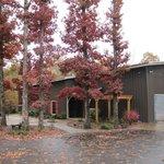 Amber Falls Winery
