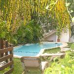 Jardin y piscina