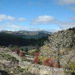 H. rural Cuarto de Milla - Entorno con visto en paseo con Gredos a Caballo