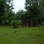 Foto de Hotel El Pizote Lodge