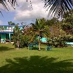 Jardin y hotel