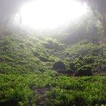 Calbiga Caves