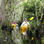 Paddling the Everglades is fantastic!