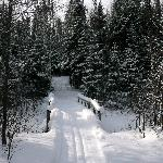 Flathorn Lake ski trail