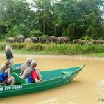Borneo Eco Tours - Day Tours
