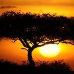 sunset at the mara
