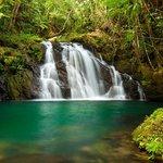 Photo de Bocawina Adventures & EcoTours Ltd.