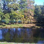 Betws-y-Coed River Llugwy