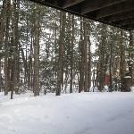 The beautiful Northwoods in winter.