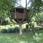 Fantastic tree house!!