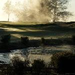 Morning dew at the Rotorua Golf Club