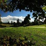 Play golf in Rotorua, New Zealand