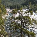Ripple Creek Cabins Foto