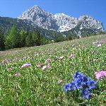 Ferchensee im Frühling