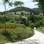 One of the lanes near Nene