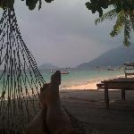 hammock in front of resort