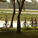 Cycle Excursion (Small )