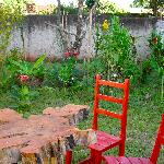 Quincho y Jardin Tropical