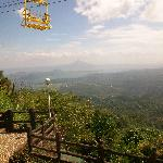 zipline view from the room