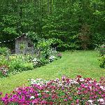 garden area in spring