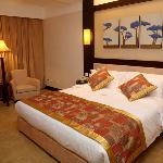 -Guest Room