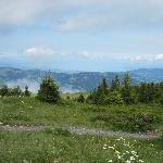 Blick in die Ferne - von Bezau-Baumgarten 1620m