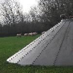 Sheep on Church Farm