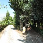 Zufahrt zum Hof