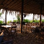 Restaurant of the private beach.
