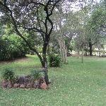 Garten im Sunbird Lodge