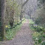 Entry path