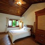 Room Astromelia