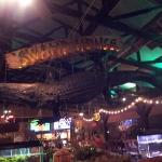 Swamp House Gator