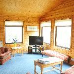 Buzzard living area
