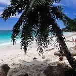 playa anse georgette-praslin