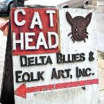CAT HEAD - Do NOT Miss This