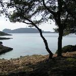 Porto Conte Trekking sulla costa