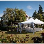 wedding marque in Bronte gardens