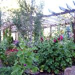 Owners love of gardening is obvious with variety of plants