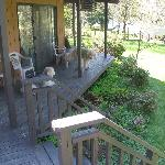 Our dogs on the narrow part of the deck that overlooks the river
