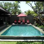 Our gorgeous pool