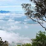 View from the top of Mt Santubung