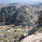 View from and of the Mt. Lemmon road