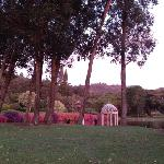 another of the grounds