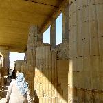 Rasa at Saqqara