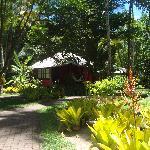 O jardim à frente do bangalô nº 1.